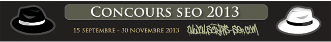 concours-seo-2013