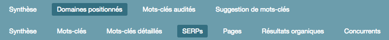 audit seo vue serps